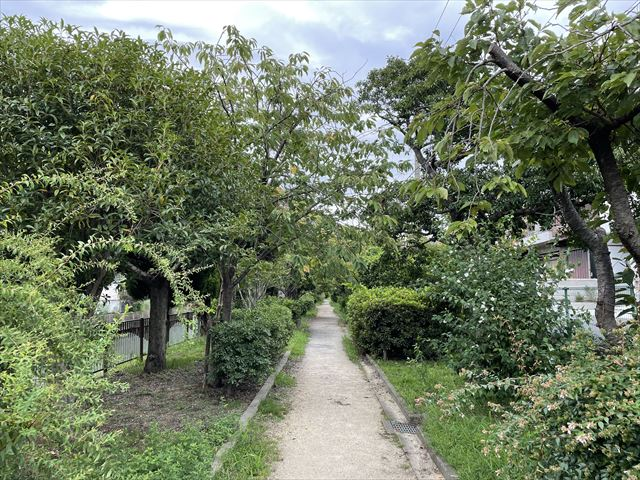 友呂岐遊歩道